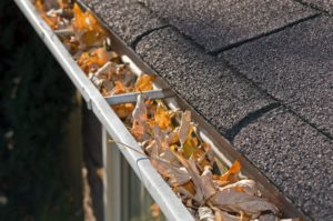 Keeping your gutters clean lessens the risk of damages to your home by water drainage and termites.